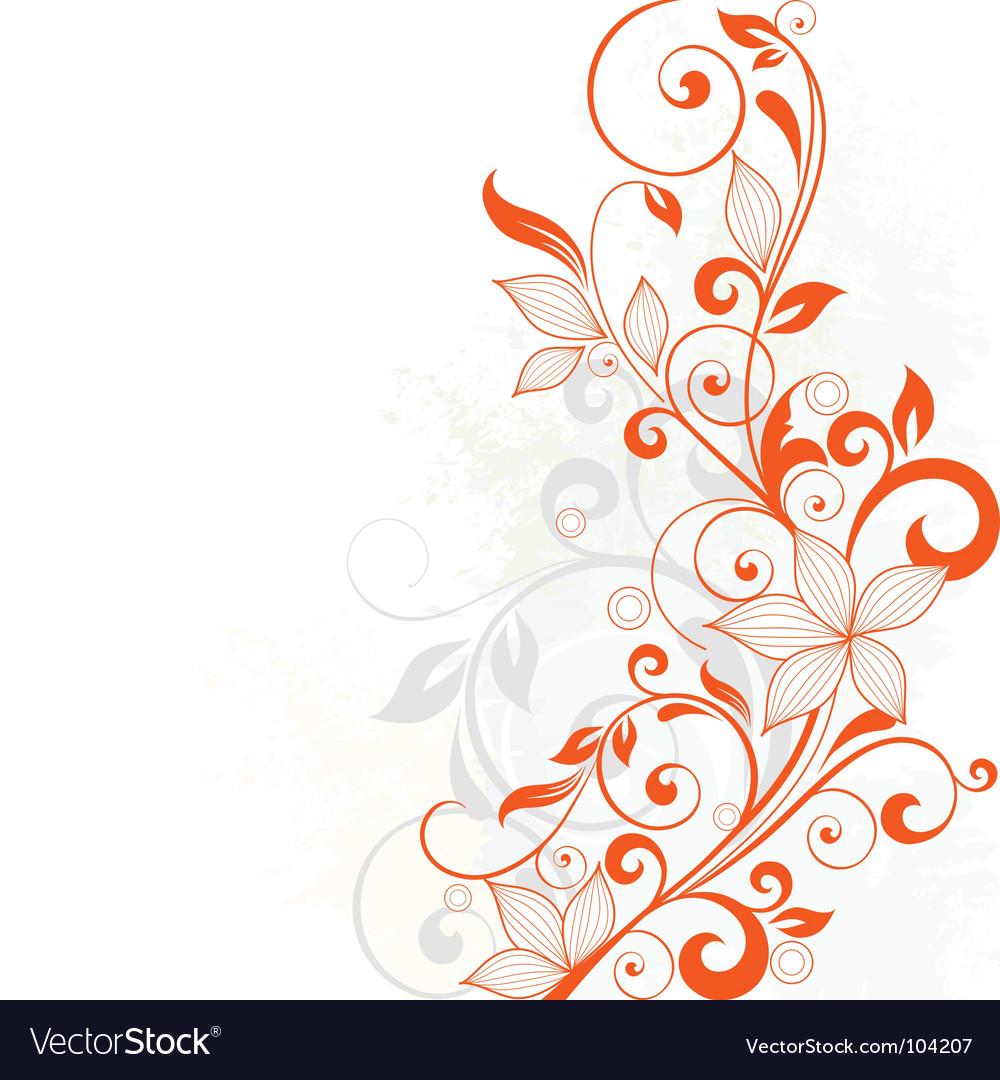Floral vine vector image