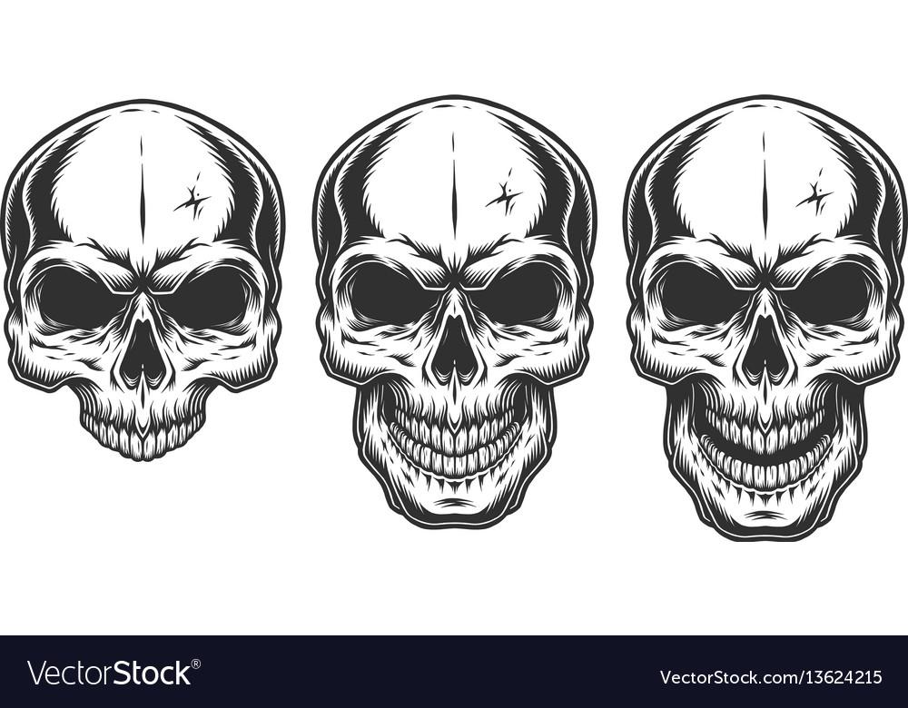 Monochrome of skull vector image