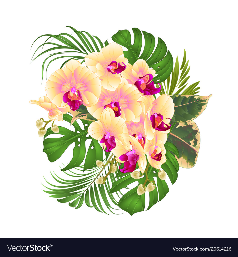 Bouquet with tropical flowers floral arrangement vector image izmirmasajfo Gallery