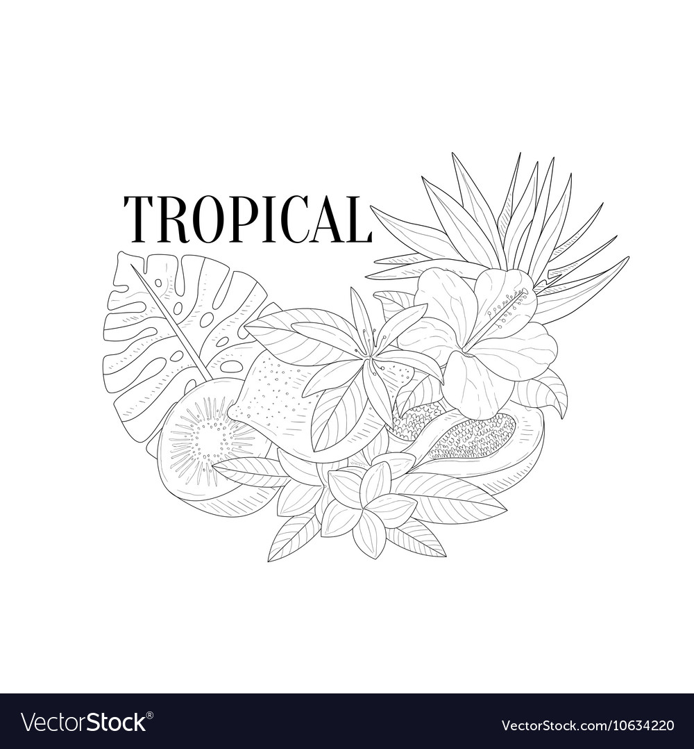 Tropical Fruits And Plants Still Life Hand Drawn vector image
