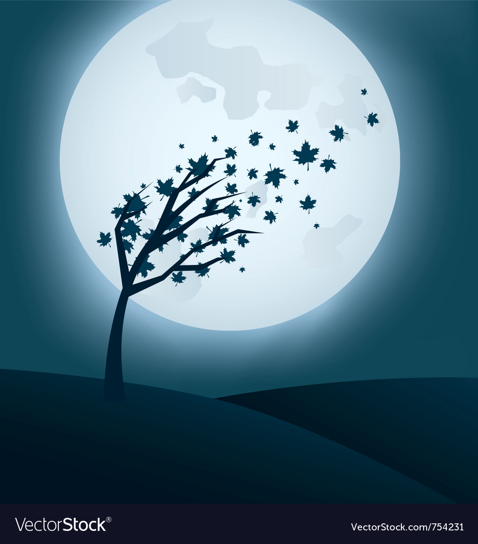 Autumn night background with falling leaves vector image