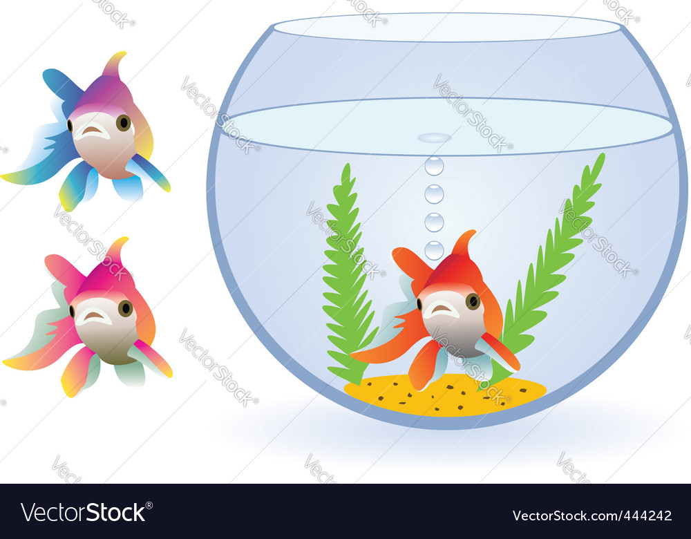 Vector aquarium and fishes vector image