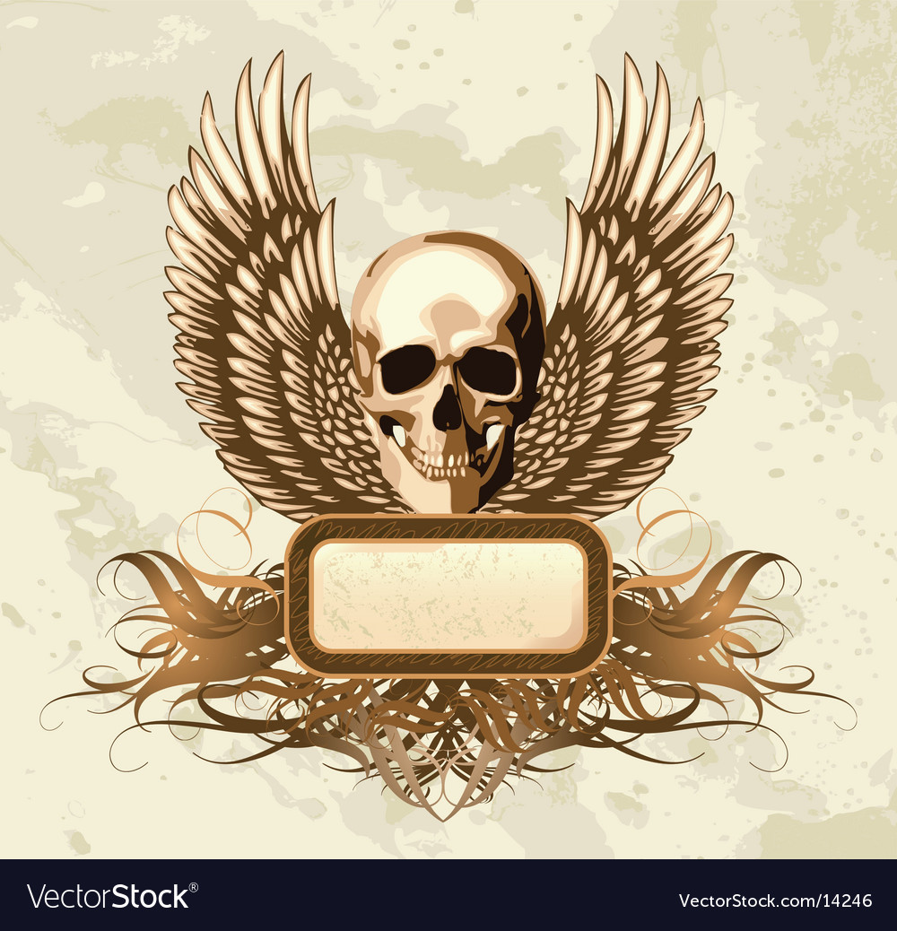 Vintage skull emblem vector image