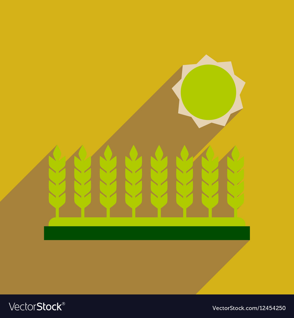 Flat web icon with long shadow Wheat field