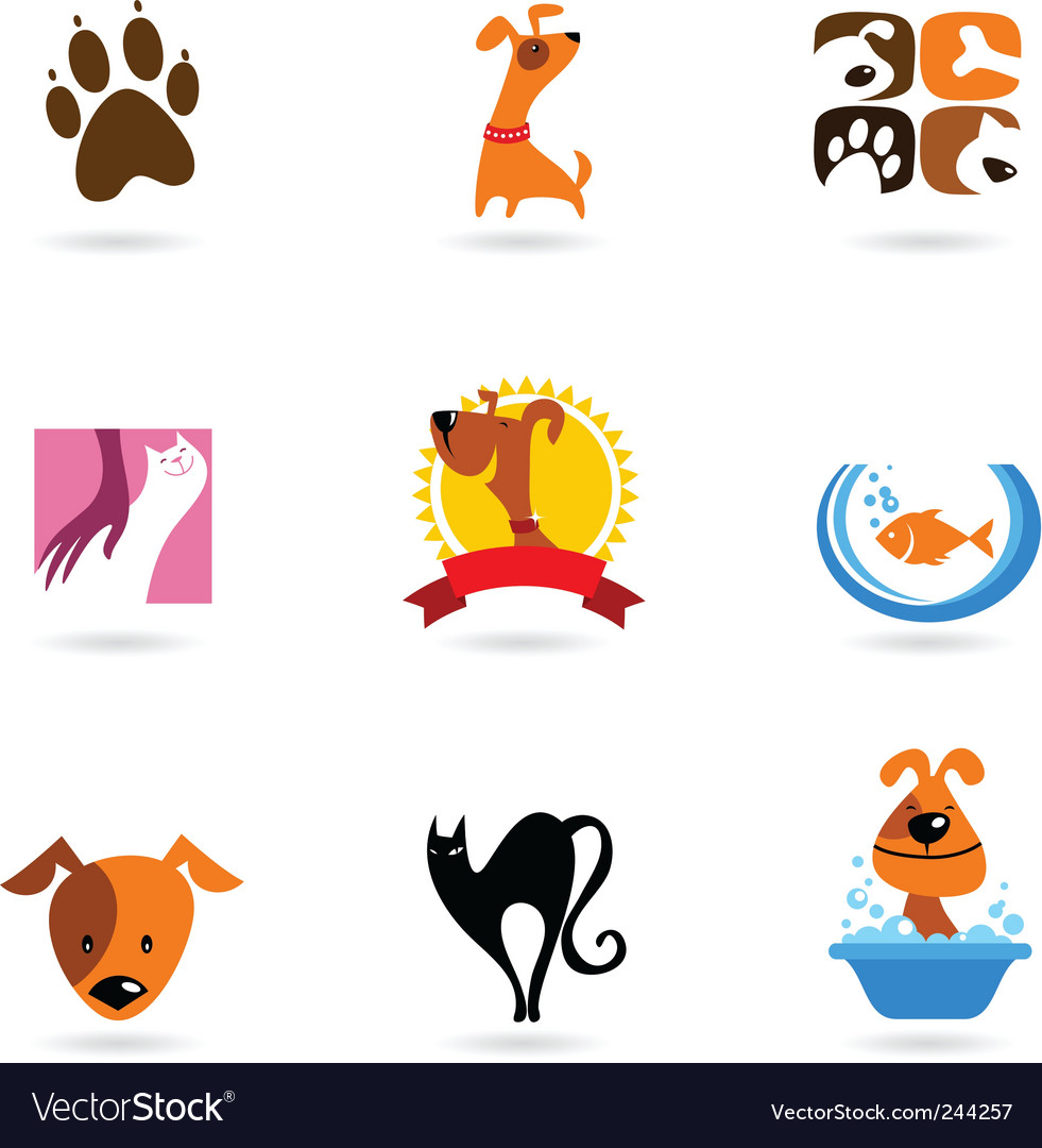 Dog cat pets vector image