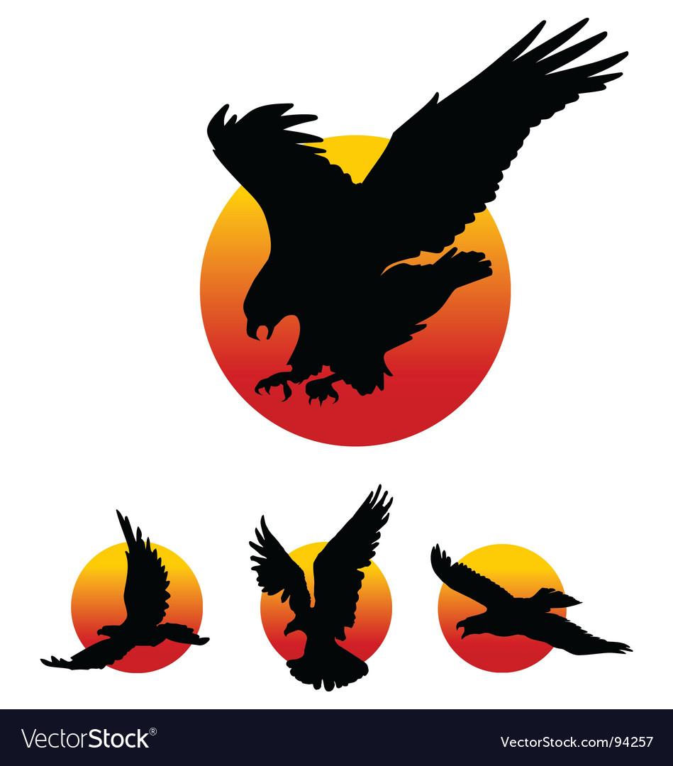 Eagle silhouettes vector image