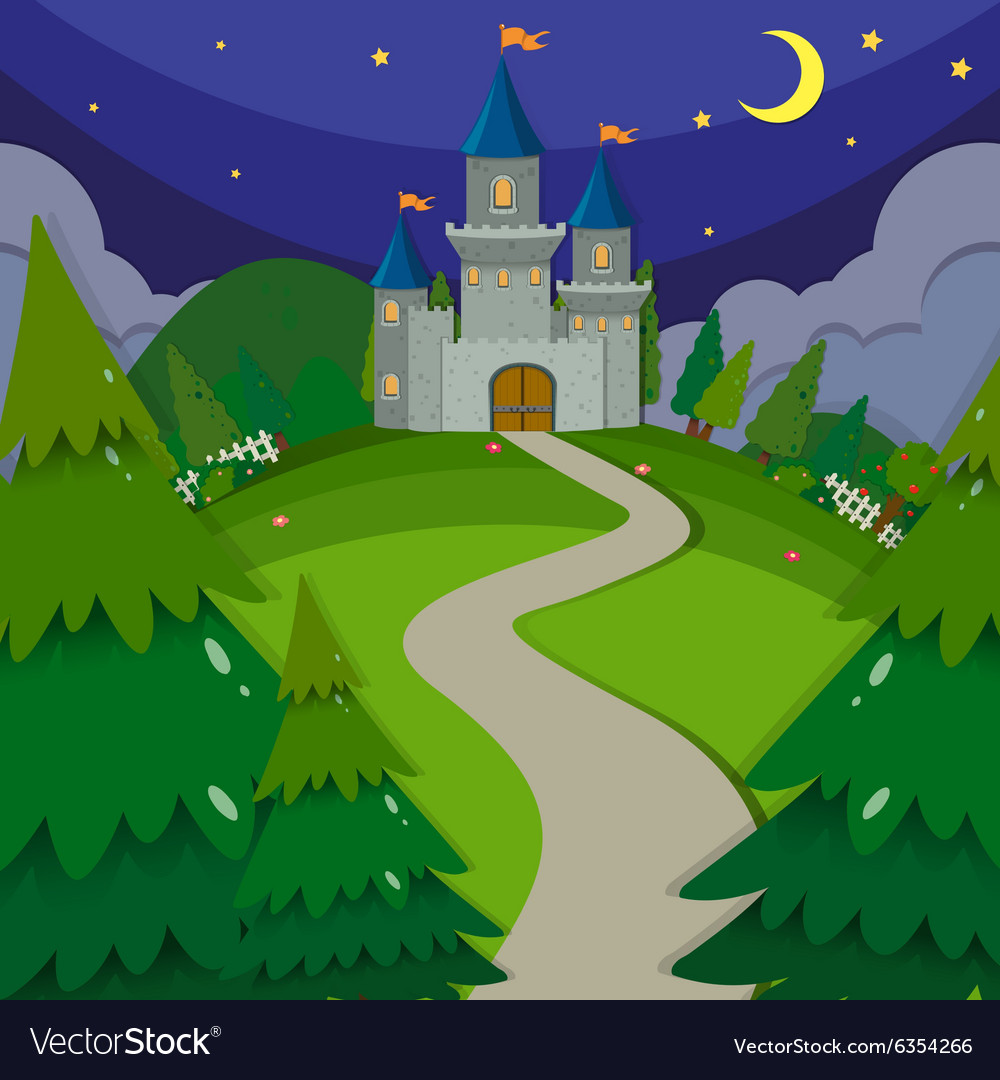 Castle towers at night vector image