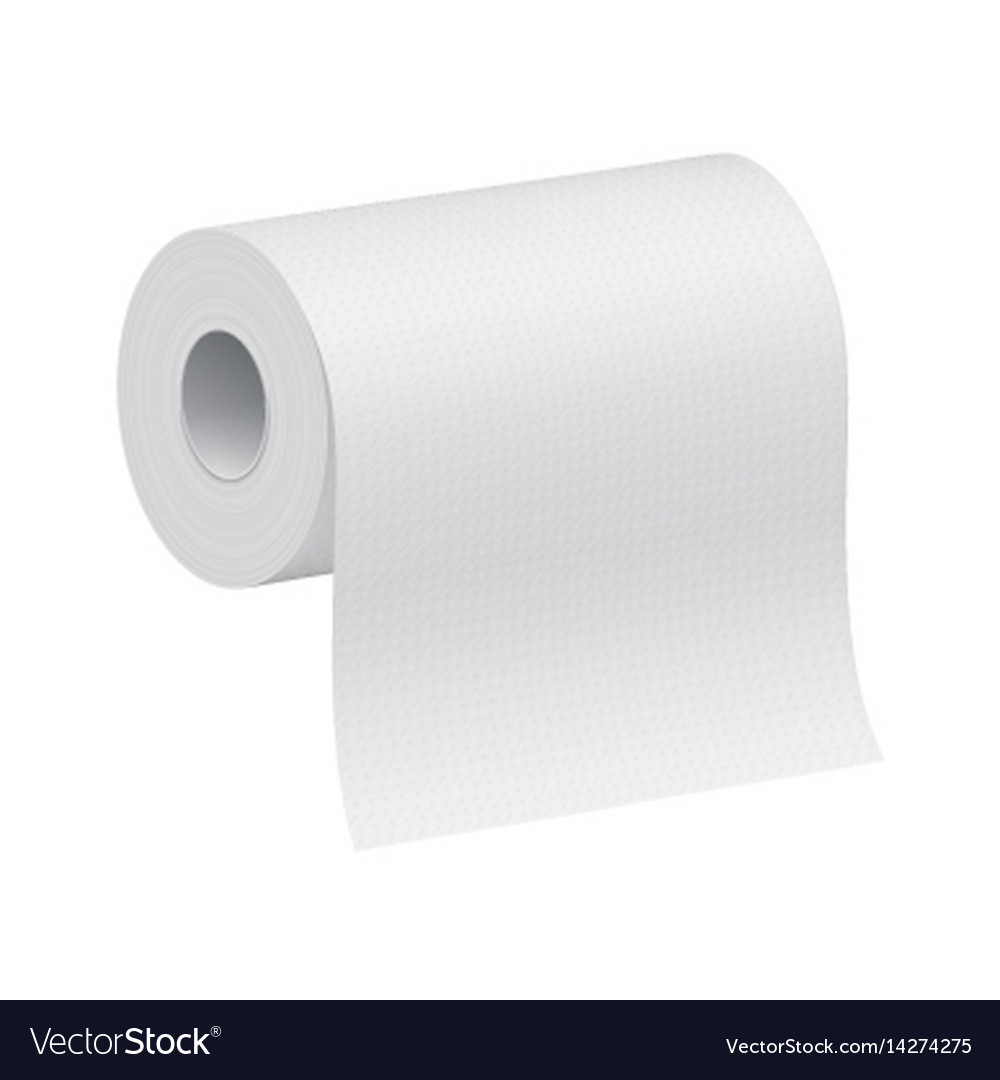 White blank 3d model of paper roll vector image