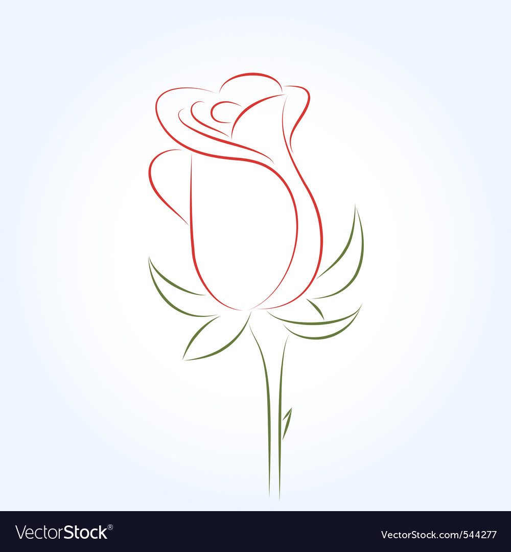 Rose vector image