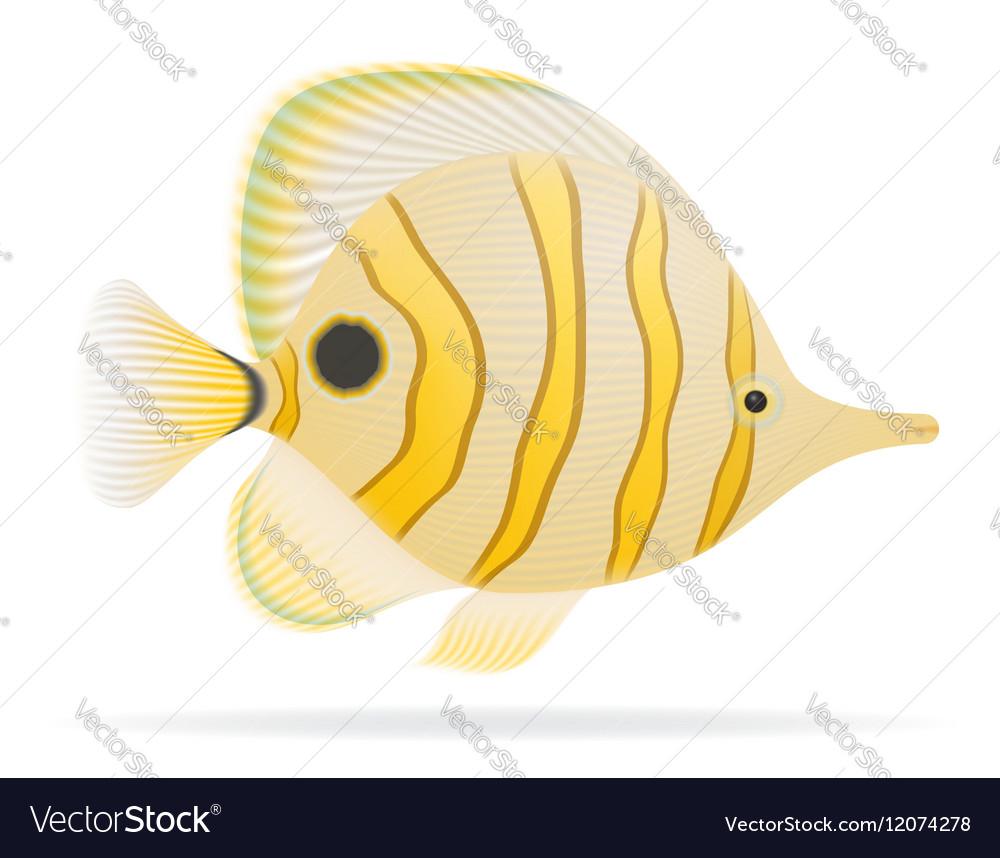 Aquarium fish 04 vector image