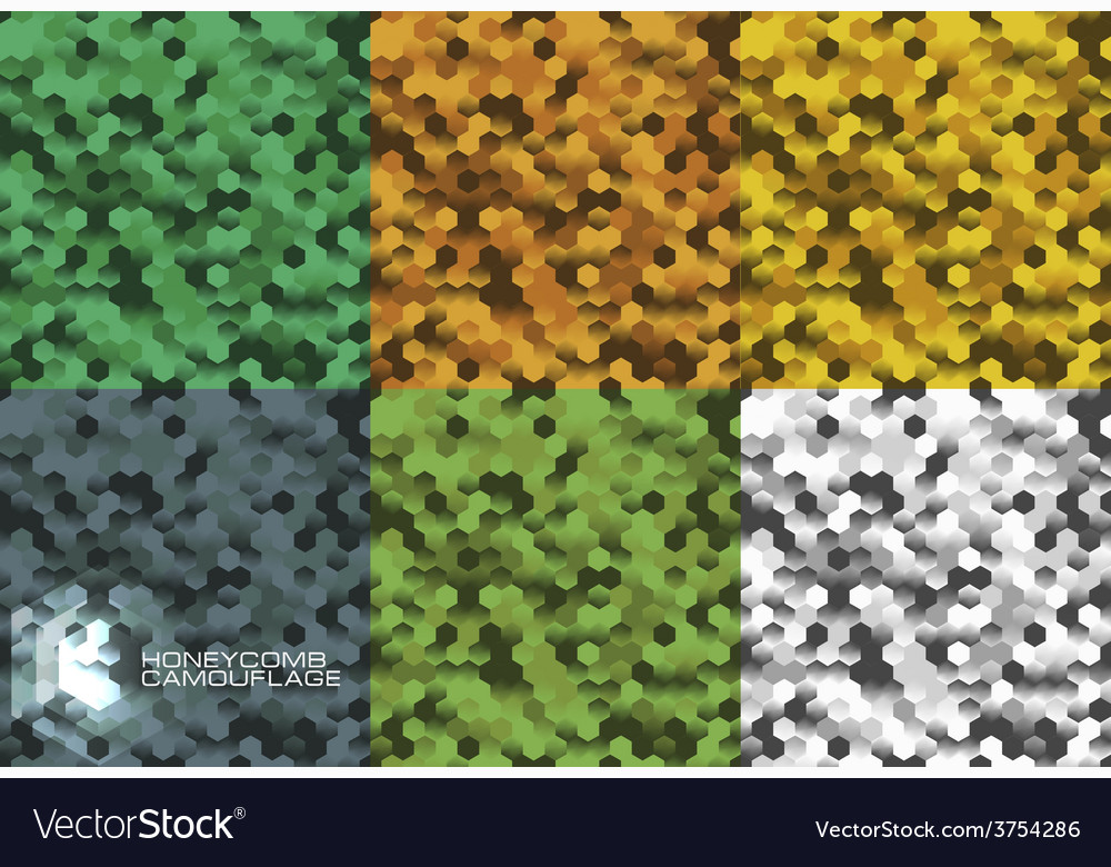 Camouflage in oneycomb style vector image