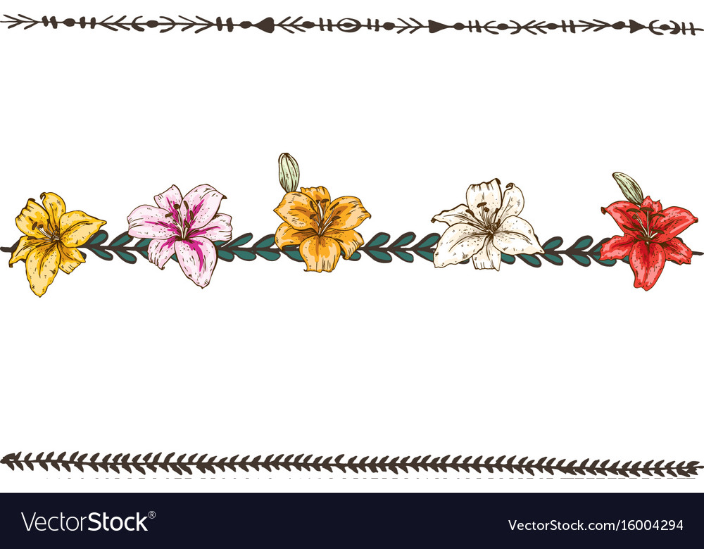 doodle floral line with blue and violet pansies vector image