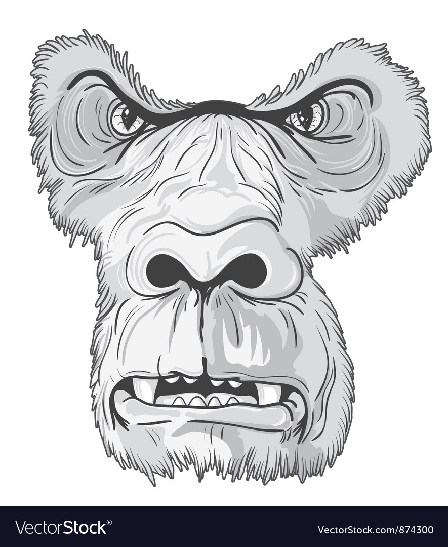 Vintage t-shirt design with gorilla face vector image