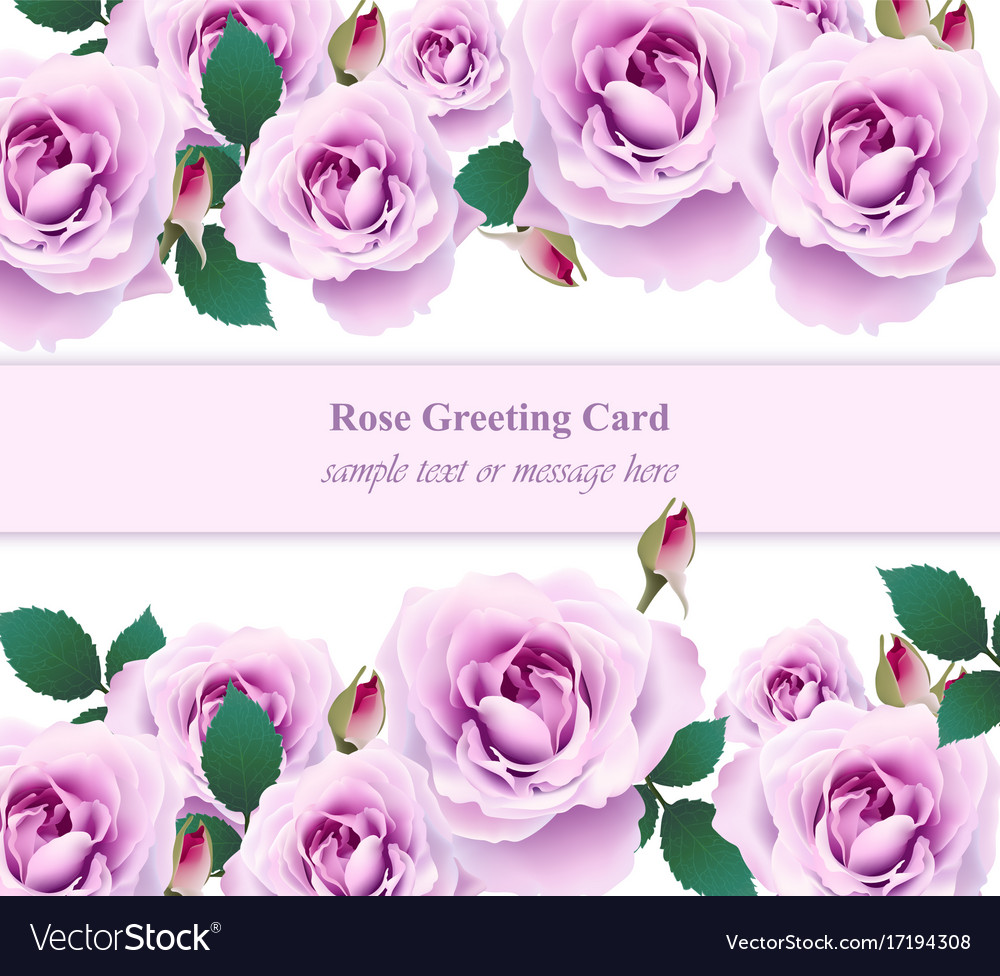 Roses flower invitation card delicate royalty free vector roses flower invitation card delicate vector image stopboris Image collections