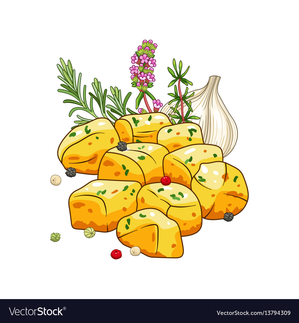 Potatoes dish with spices vector image