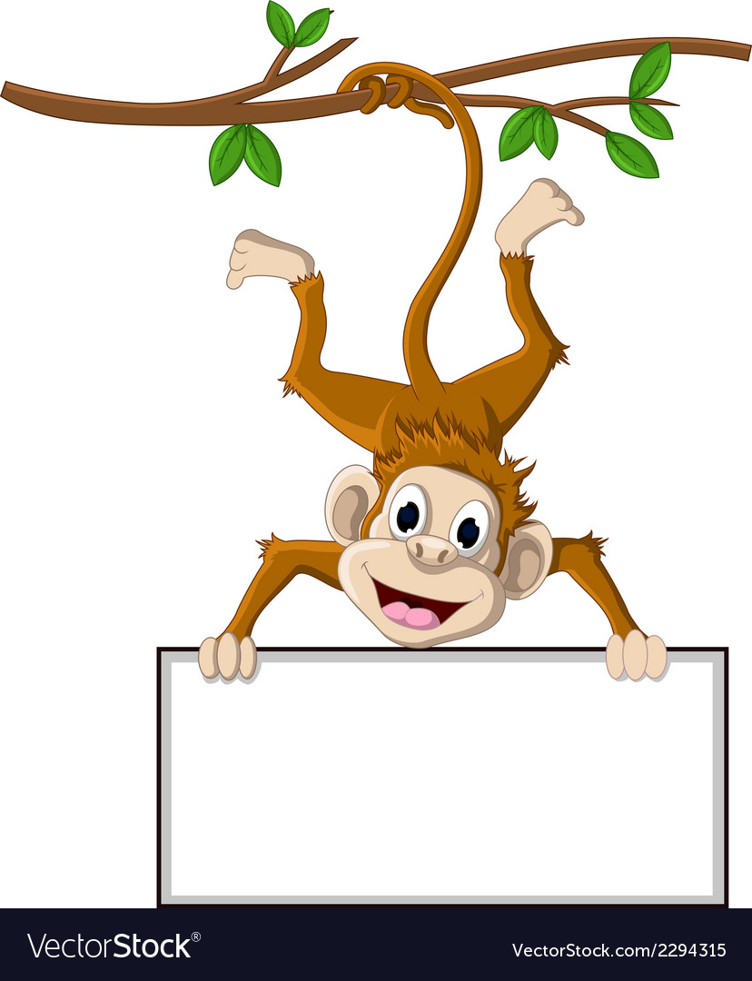 Monkey cartoon holding blank sign vector image