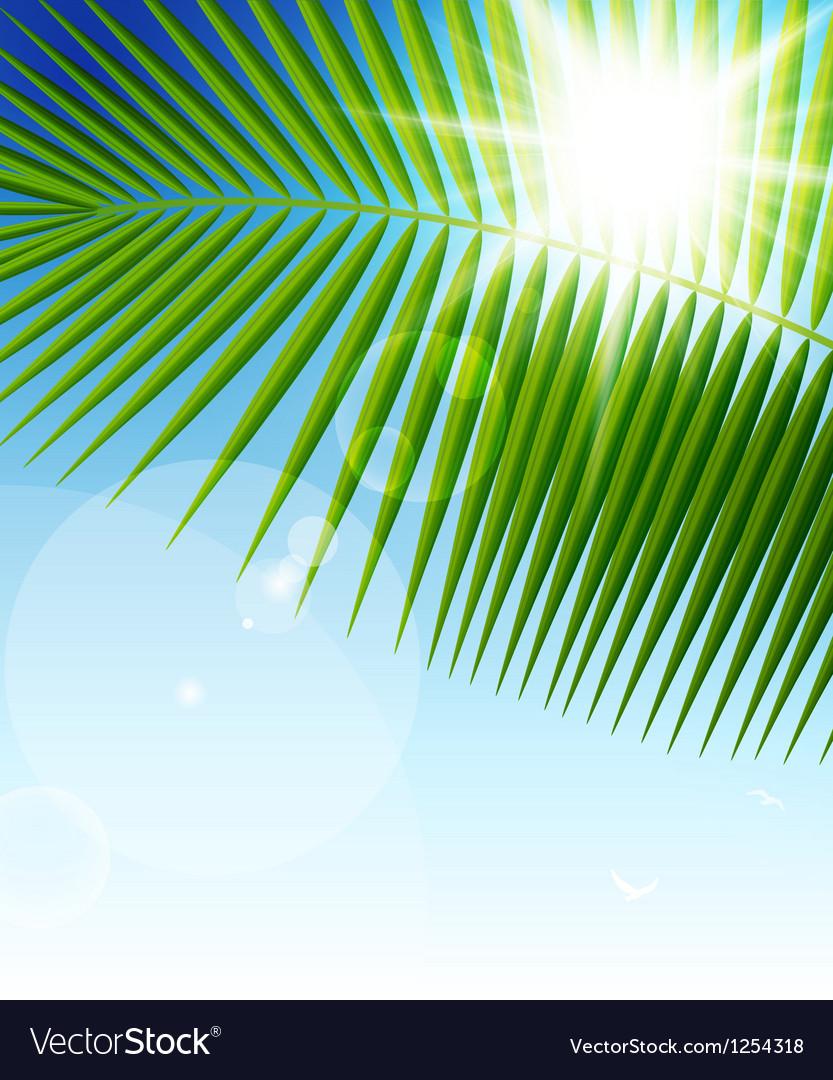 Palm leaf1 vector image