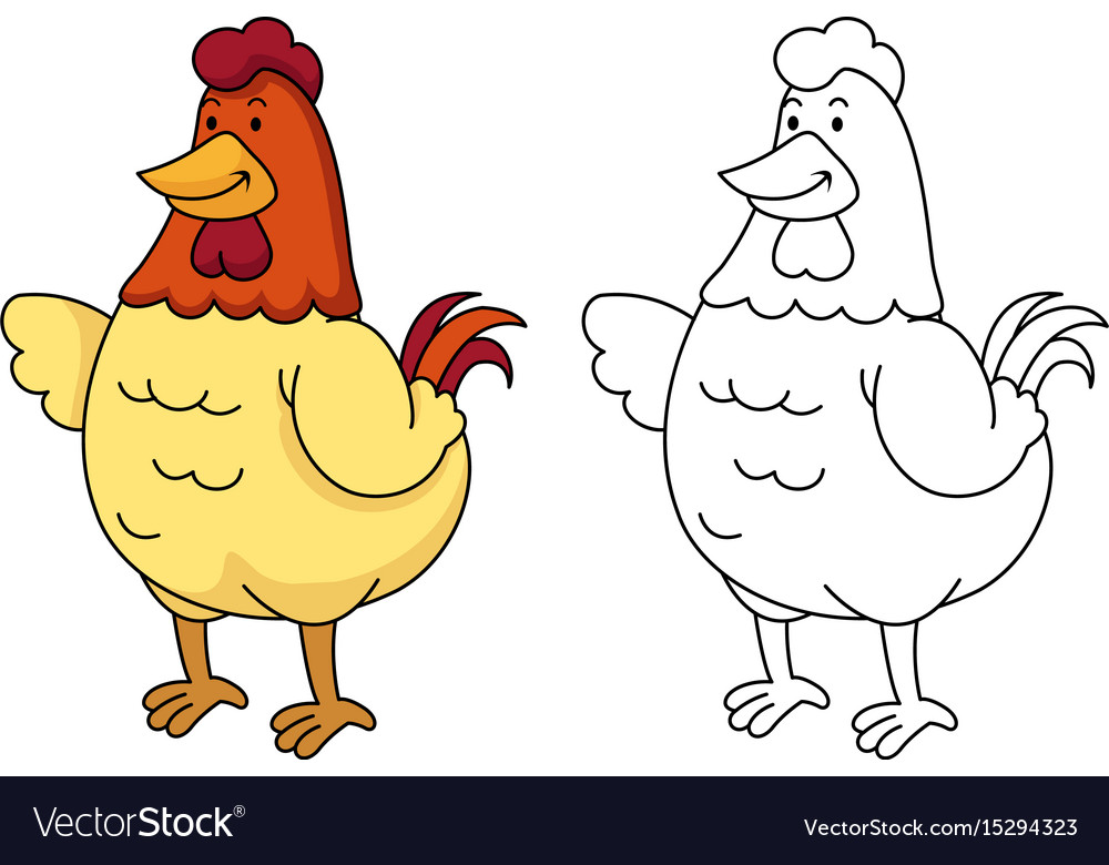 Educational coloring book -chicken vector image