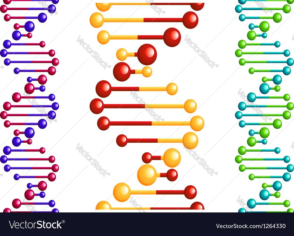 DNA molecule with elements vector image