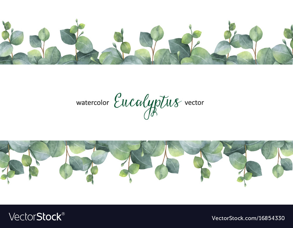 Watercolor green floral banner with silver vector image