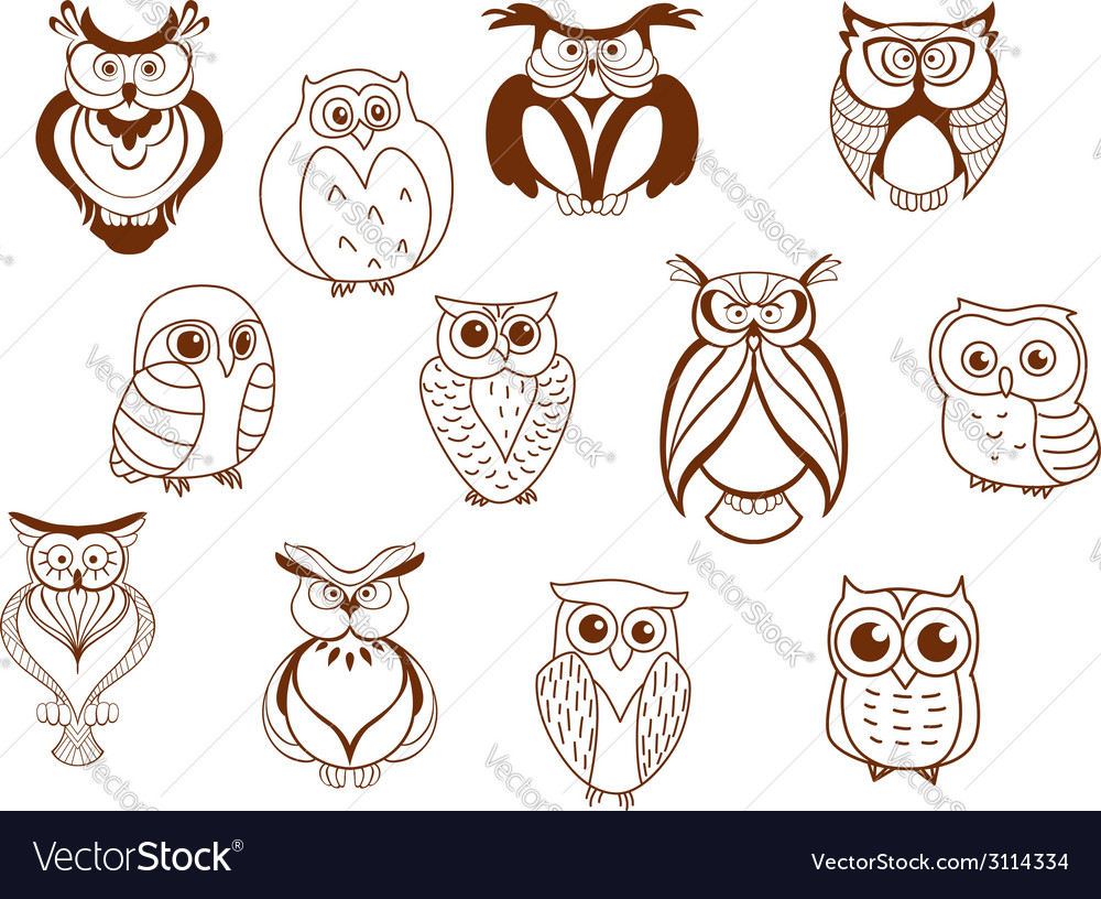 Cute cartoon owl characters vector image