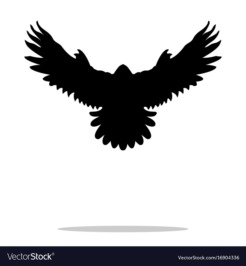Falcon bird black silhouette animal vector image