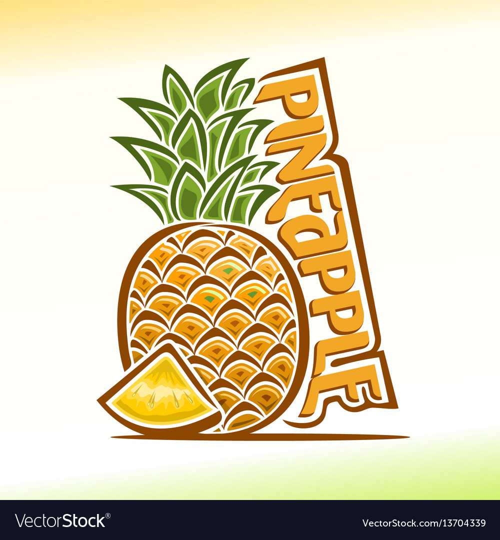 Pineapple still life vector image