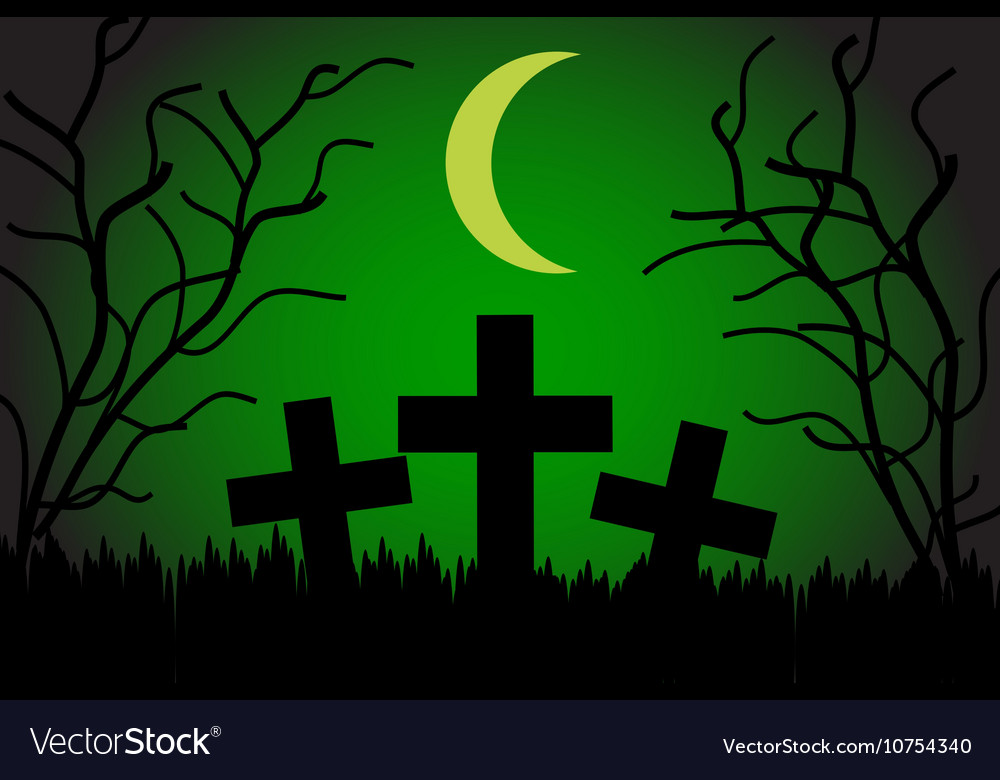 Cemetery at night vector image