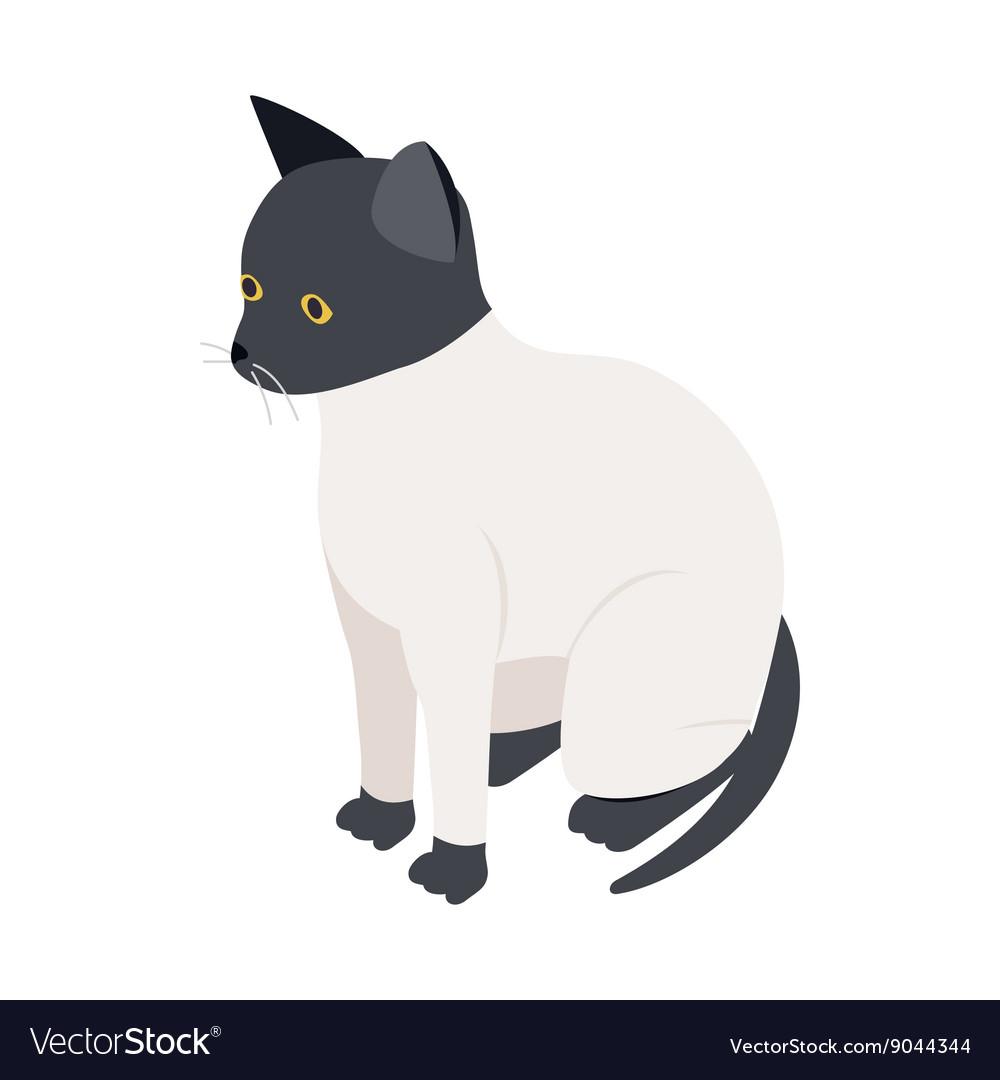 3d ragdoll cat