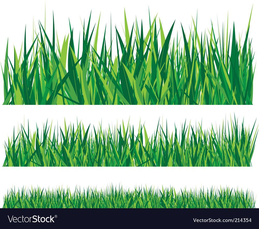 Grass Royalty Free Vector Image - VectorStock