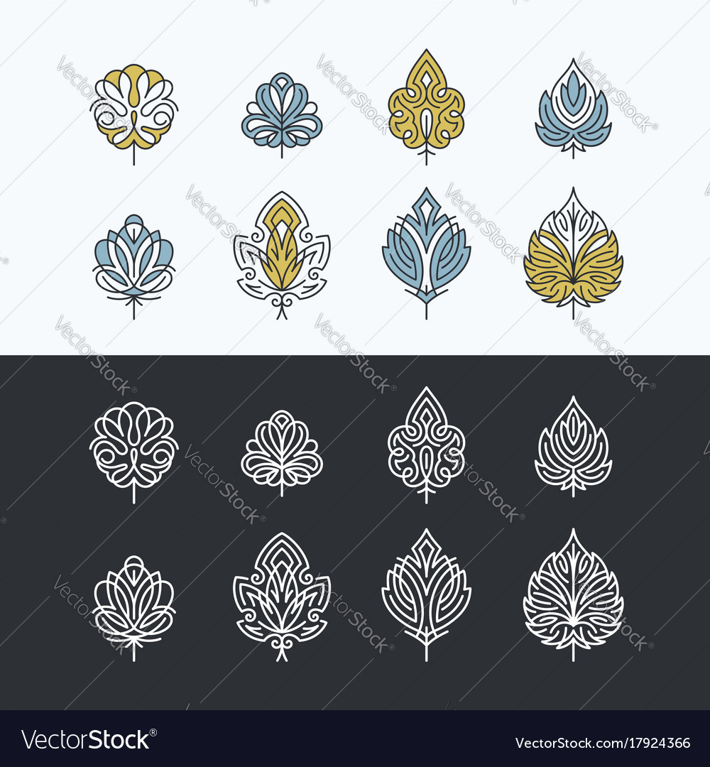 Line and color lacy abstract leaves vector image