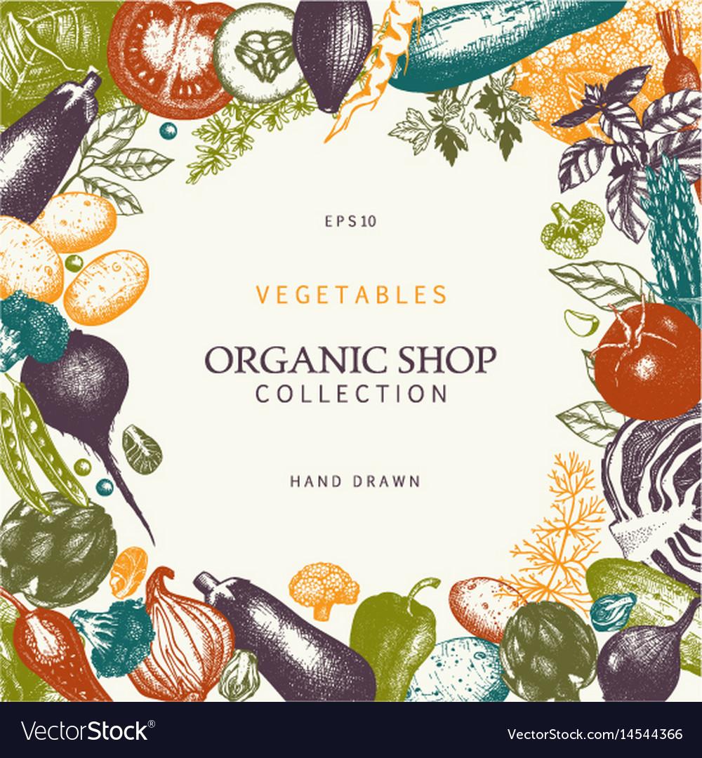 Vintage vegetables vector image