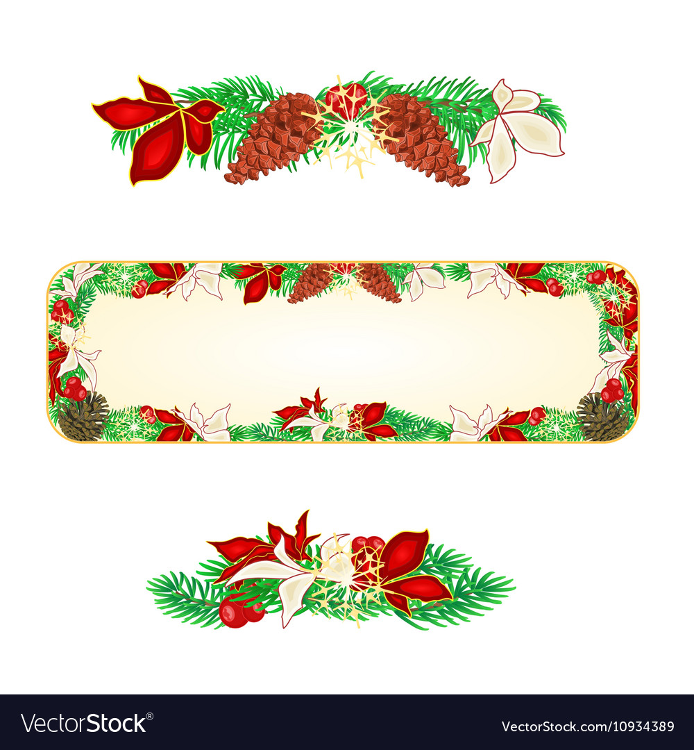 Banner Christmas Spruce and poinsettia vector image