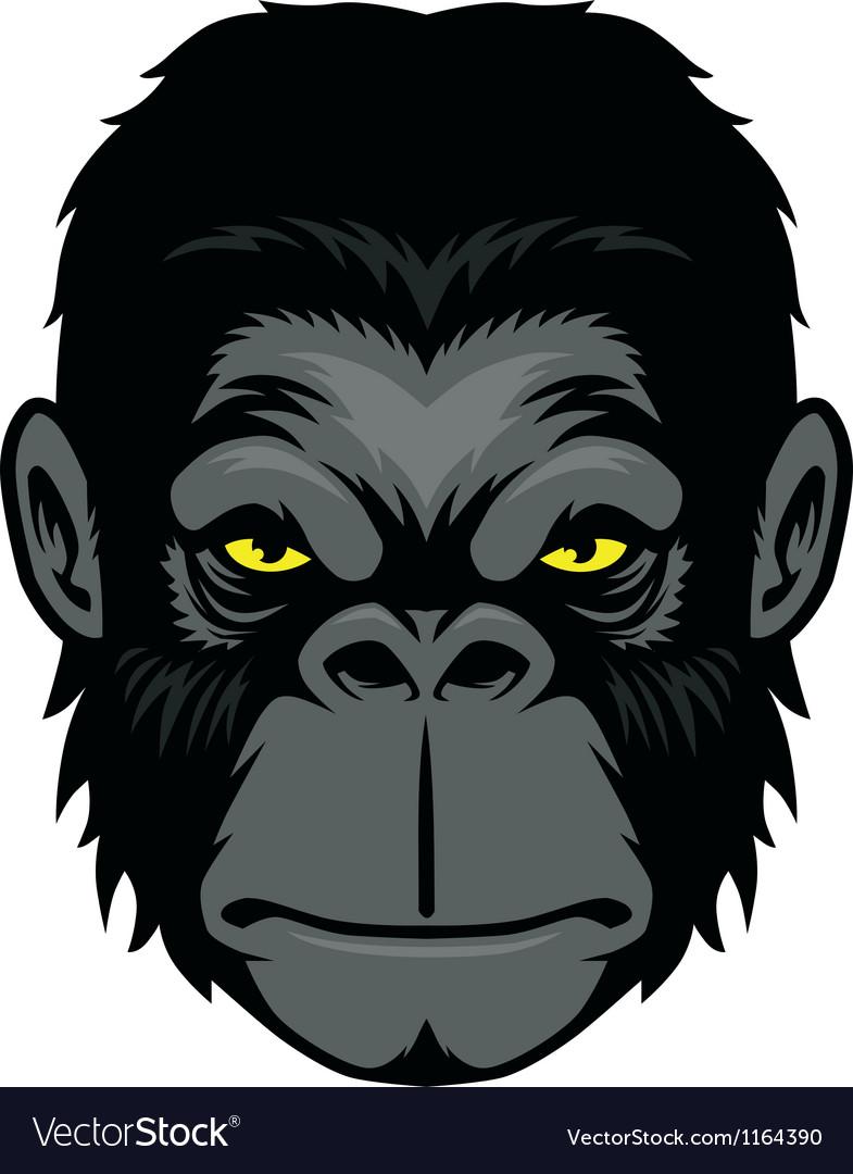 Ape head mascot vector image