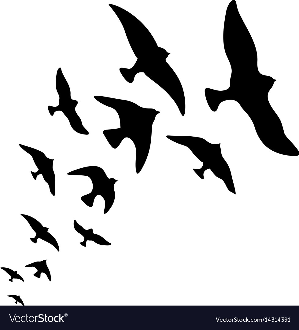 Silhouette flock of flying birds design vector image