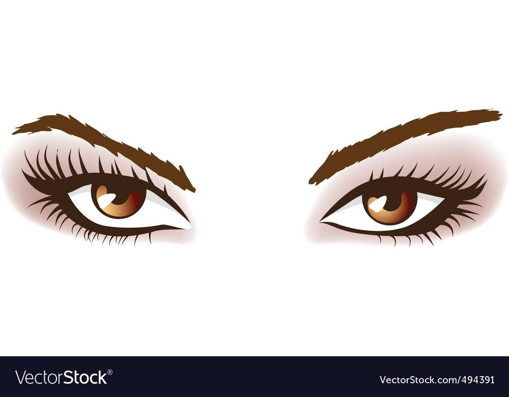 Woman brown eyes vector image