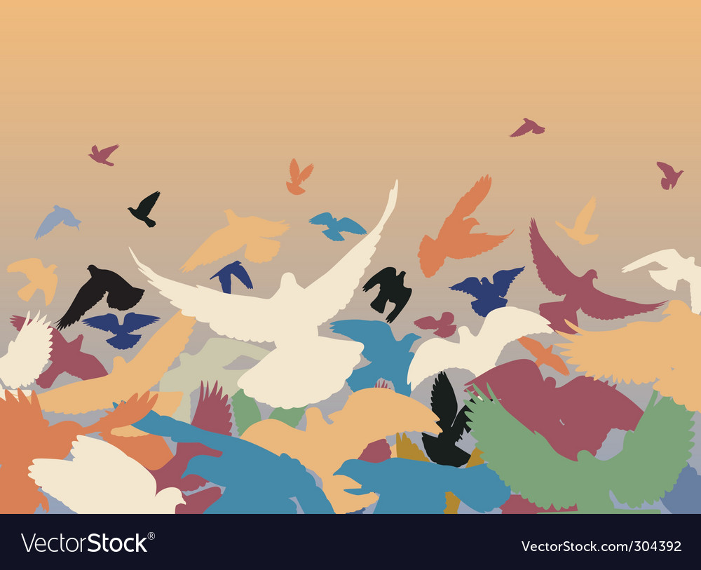 Color pigeons vector image