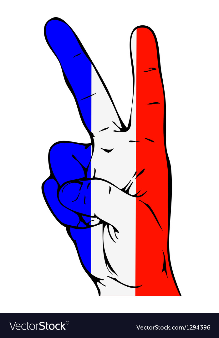 Peace Sign of the French flag vector image