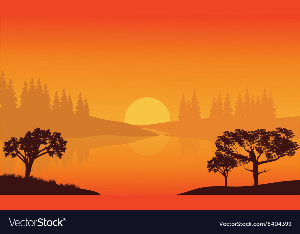 City trees of silhouette vector image
