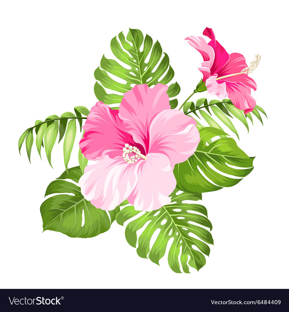Tropical flower garland royalty free vector image tropical flower garland vector image izmirmasajfo Gallery