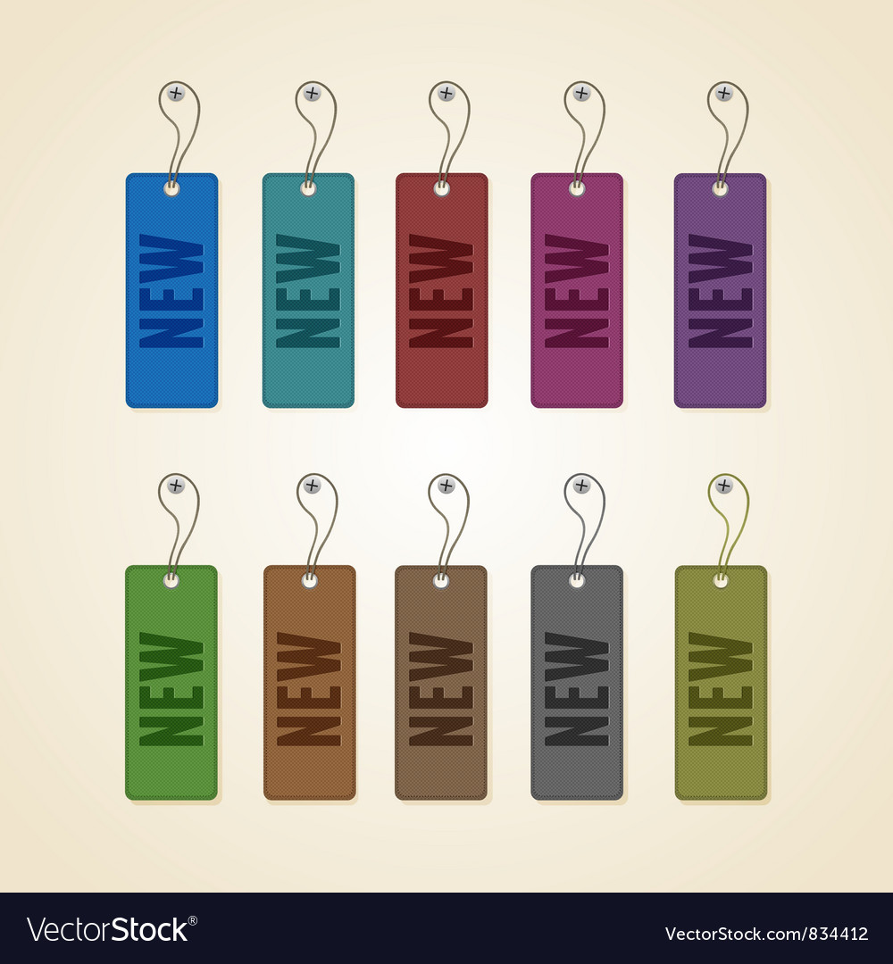 Set of colorful new tags vector image