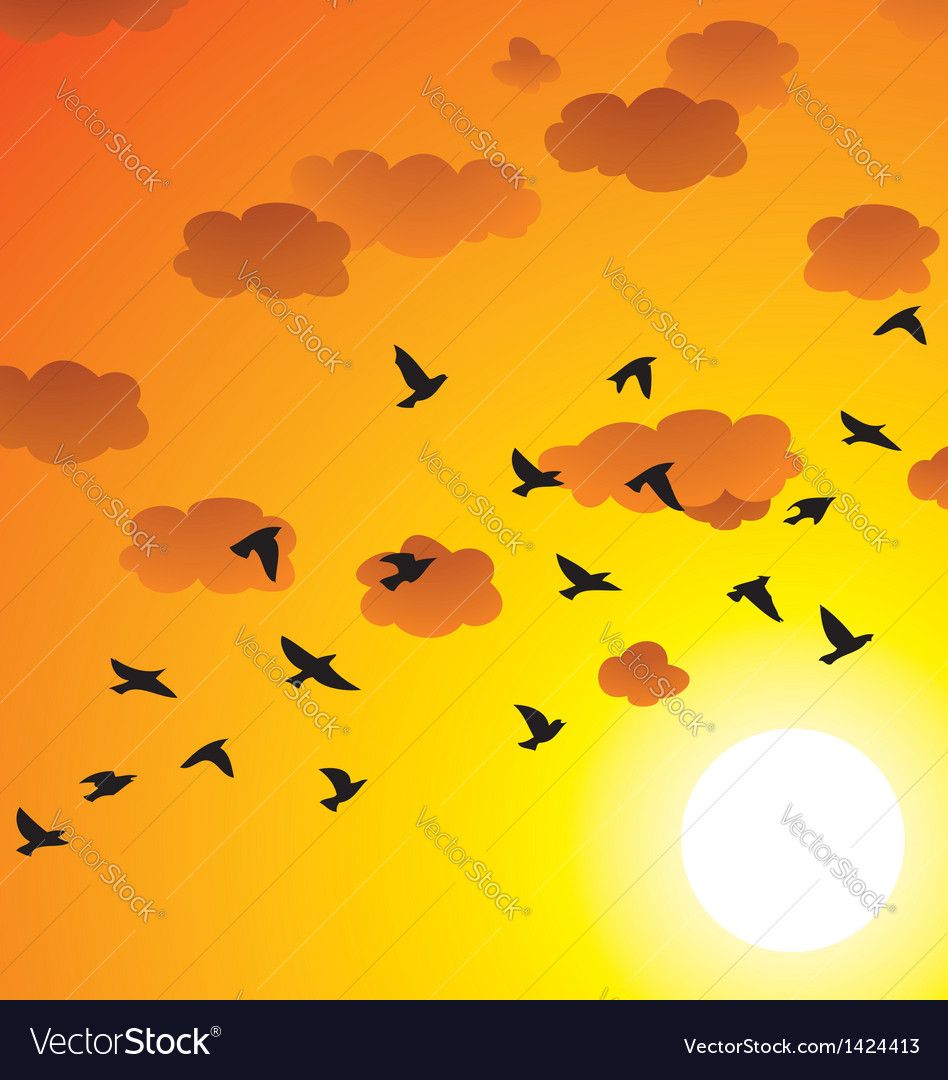 Flock of flying birds vector image