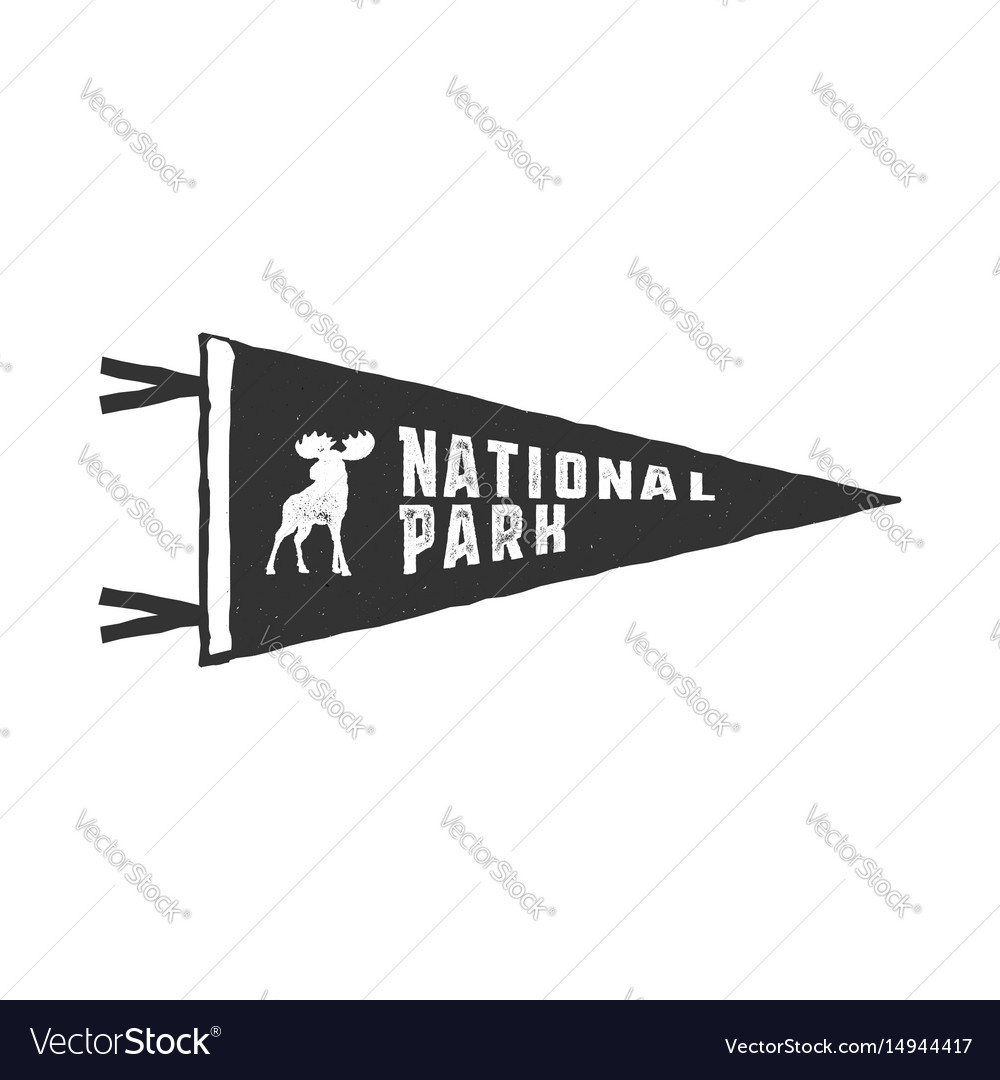 Vintage hand drawn pennant template camping sign vector image