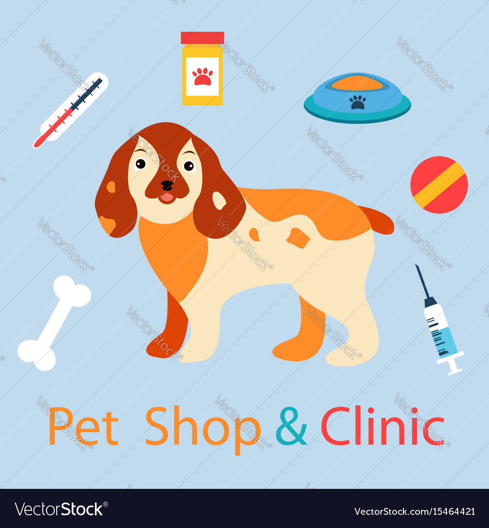Banner with cute dog with pet medicine and stuff vector image