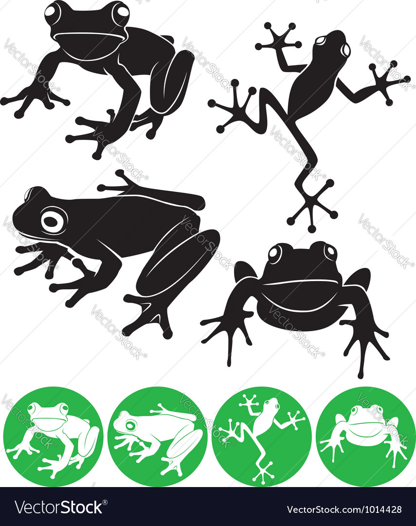 Frog Royalty Free Vector Image  Vectorstock. Job App Cover Letters Template. Valentines Day Cards Free Download Template. Skills For Job Application Template. Quality Assurance Analyst Resume Sample Template. Certified Rent Roll Template. Missing Dog Sign Template. What Is My Work Ethic Template. Management Plan Templates Free Photo
