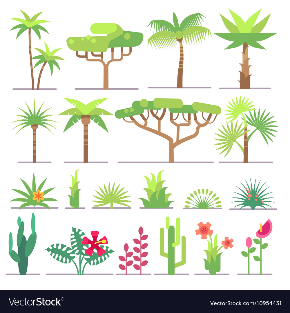 Different types of tropical plants trees flowers vector image
