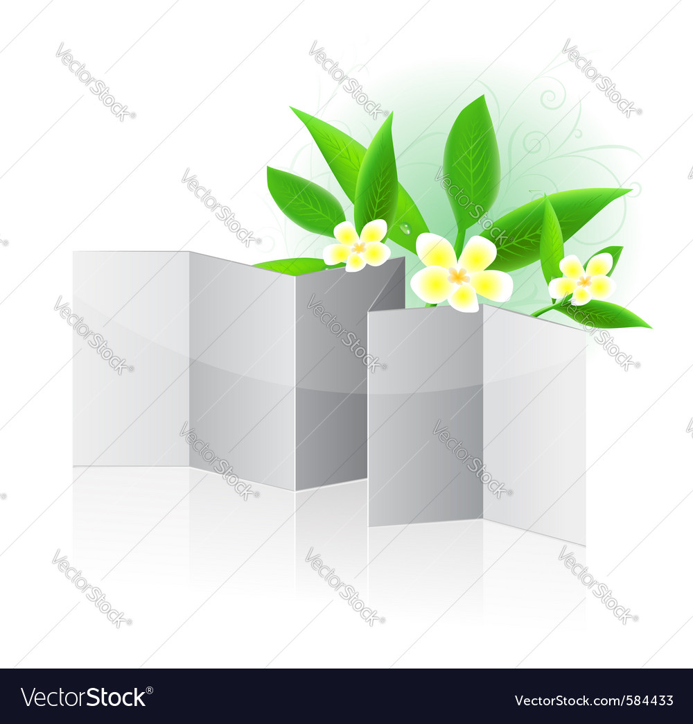 Leaflet blank vector image