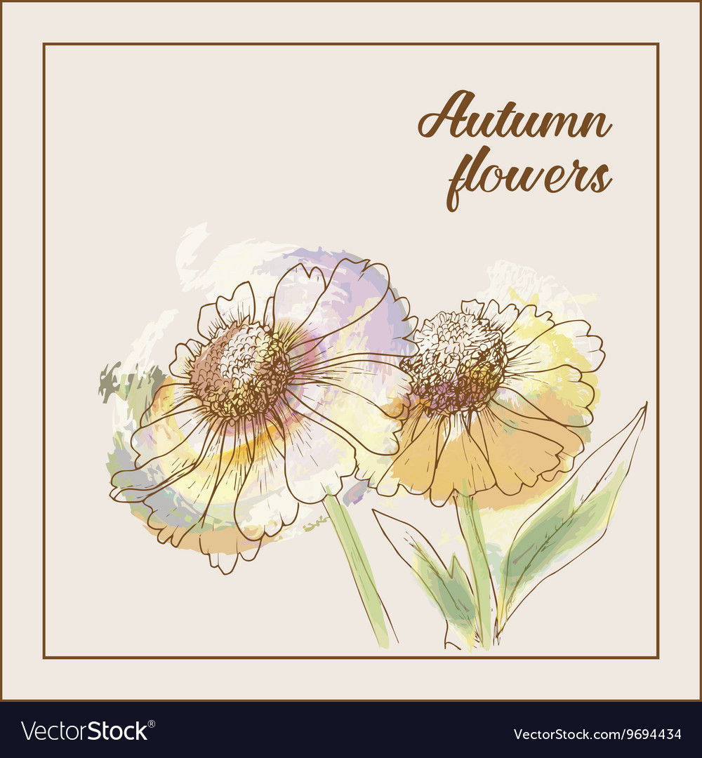 Imitation of the watercolor painting flowers vector image