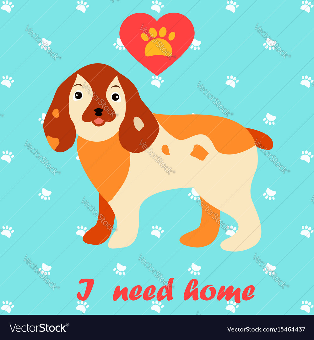 Cute dog i need home text homeless animals vector image