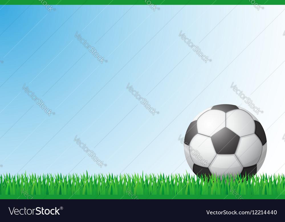 Sports grass field 01 vector image